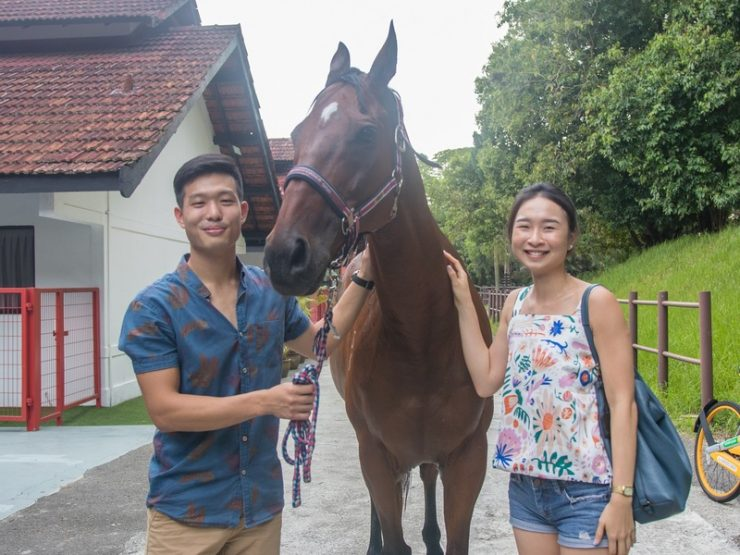 horses-indoor-21st-birthday-party-venue-event-space-house-for-rent-venuerific-needle-haystack-singapore
