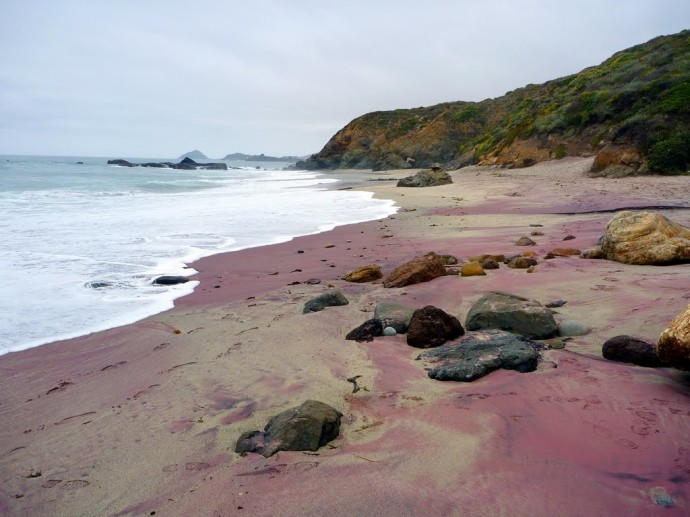 strangest-beaches-venuerific-blog-pfeiffer-purple-sand-beach-california