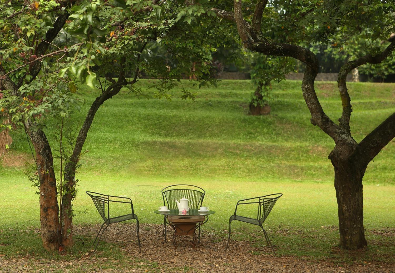 wedding-venue-jakarta-venuerific-blog-Plataran-Cilandak-garden
