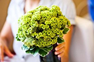 Perfect-wedding-flower-venuerific-blog-the-artsy-hipster-celosia-green-flower-bouquet