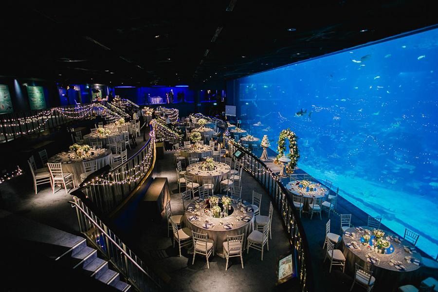 Indoor-Unique-Wedding-Aquairum-Event-Space-Singapore