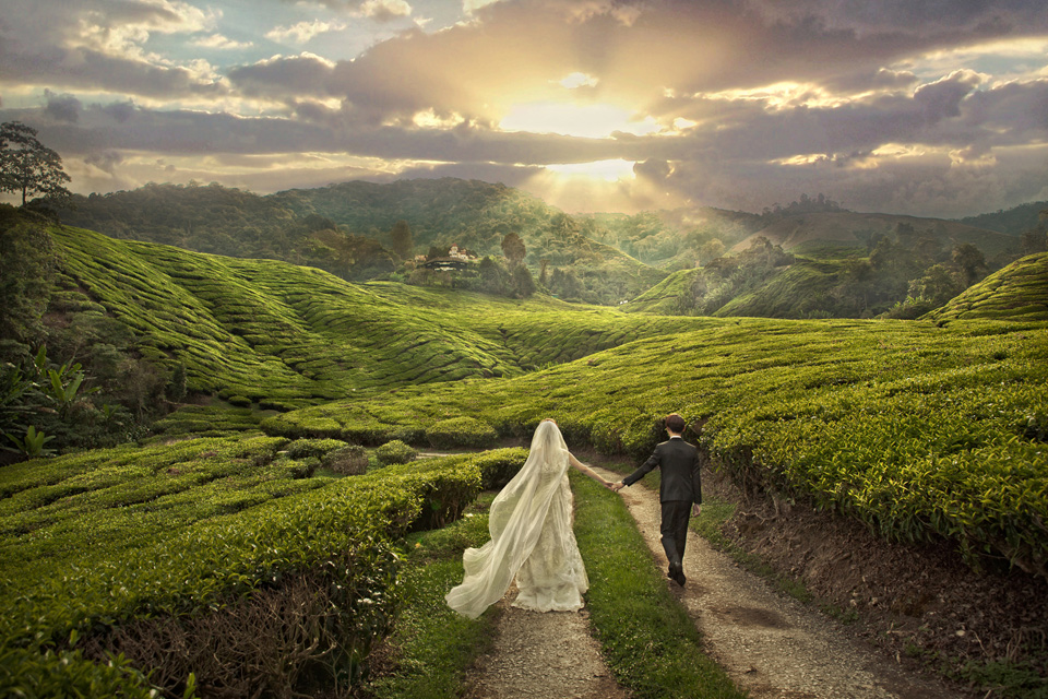 Dream-wedding-photoshoot-venuerific-blog-mossy-forest-malaysia