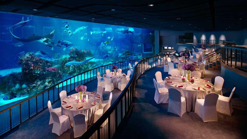 Indoor-Unique-Wedding-Aquarium-Event-Space-Singapore
