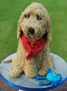 Dogs-birthday-venues-venuerific-blog-cute-dog-cake
