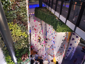 Singapore mall with climbing activity